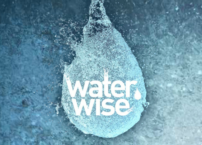 Logo Waterwise website