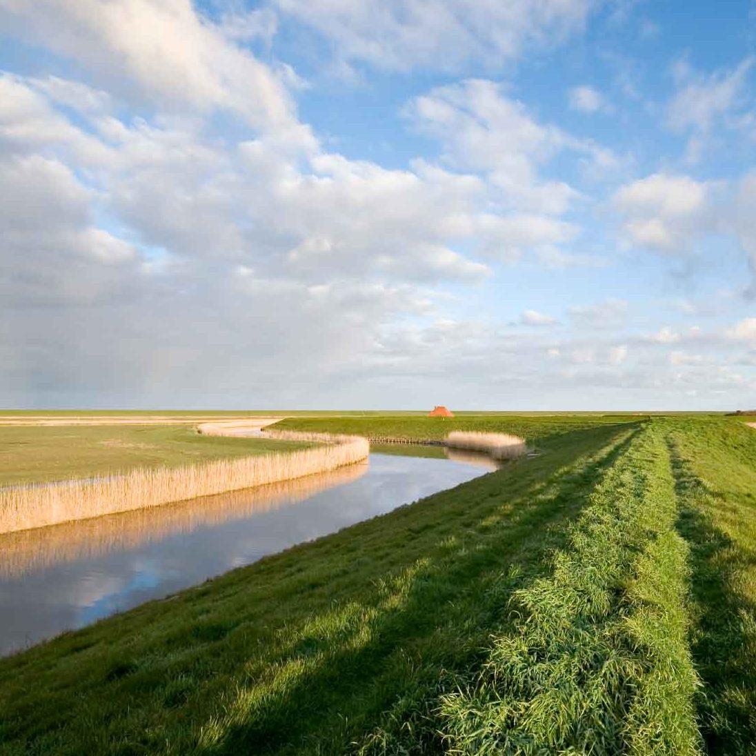 Project IJkdijk, de dijk van de toekomst