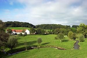 Foto van landschap waterschap Limburg, boerderijtje met beek