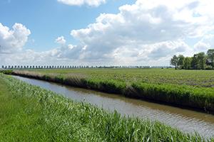Akkers in waterschap Zuiderzeeland