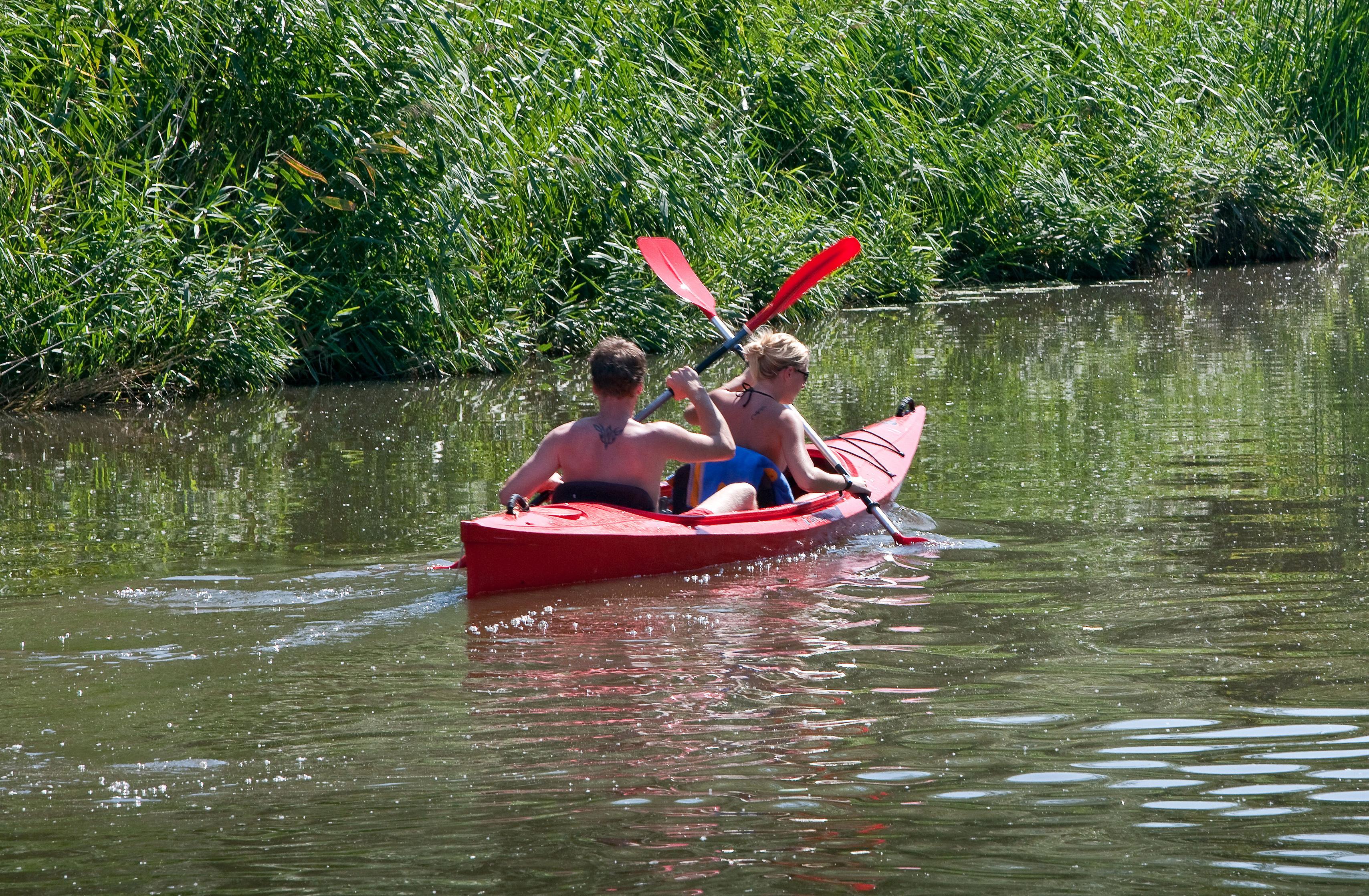 Kajakkers in het water