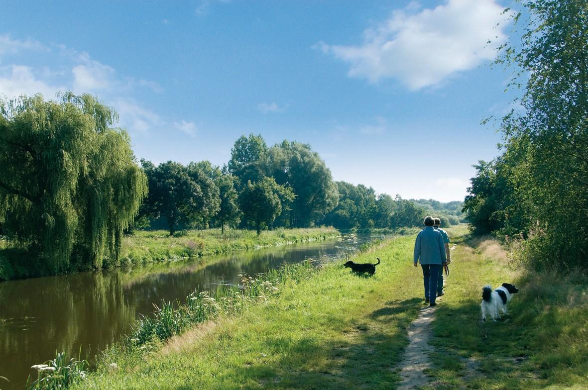 Wandelen langs het water met de hond
