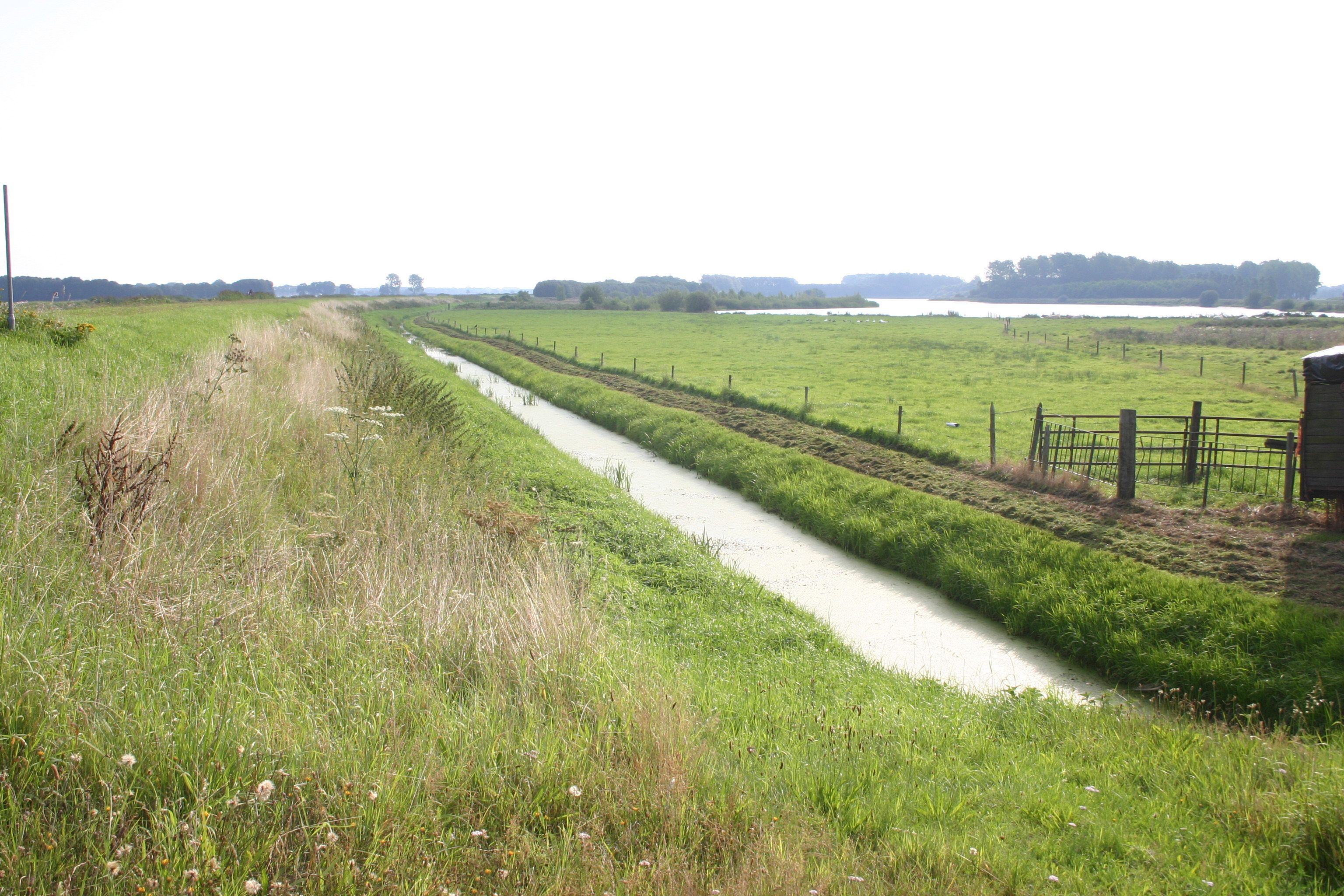 Waterberging Panjerd-Veeningen in waterschap Drents Overijsselse Delta
