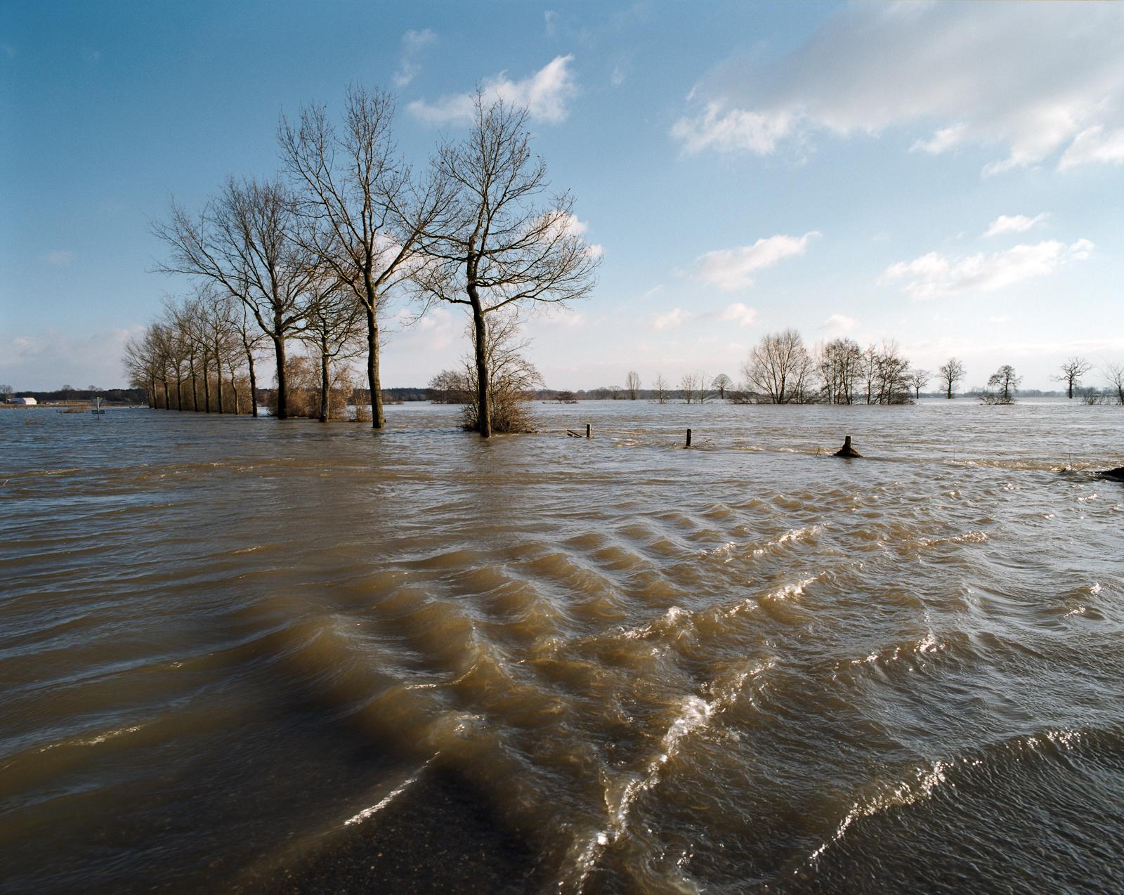 Hoogwater in de Maas bij de Weideweg naast de Koninginnebrug bij Well.